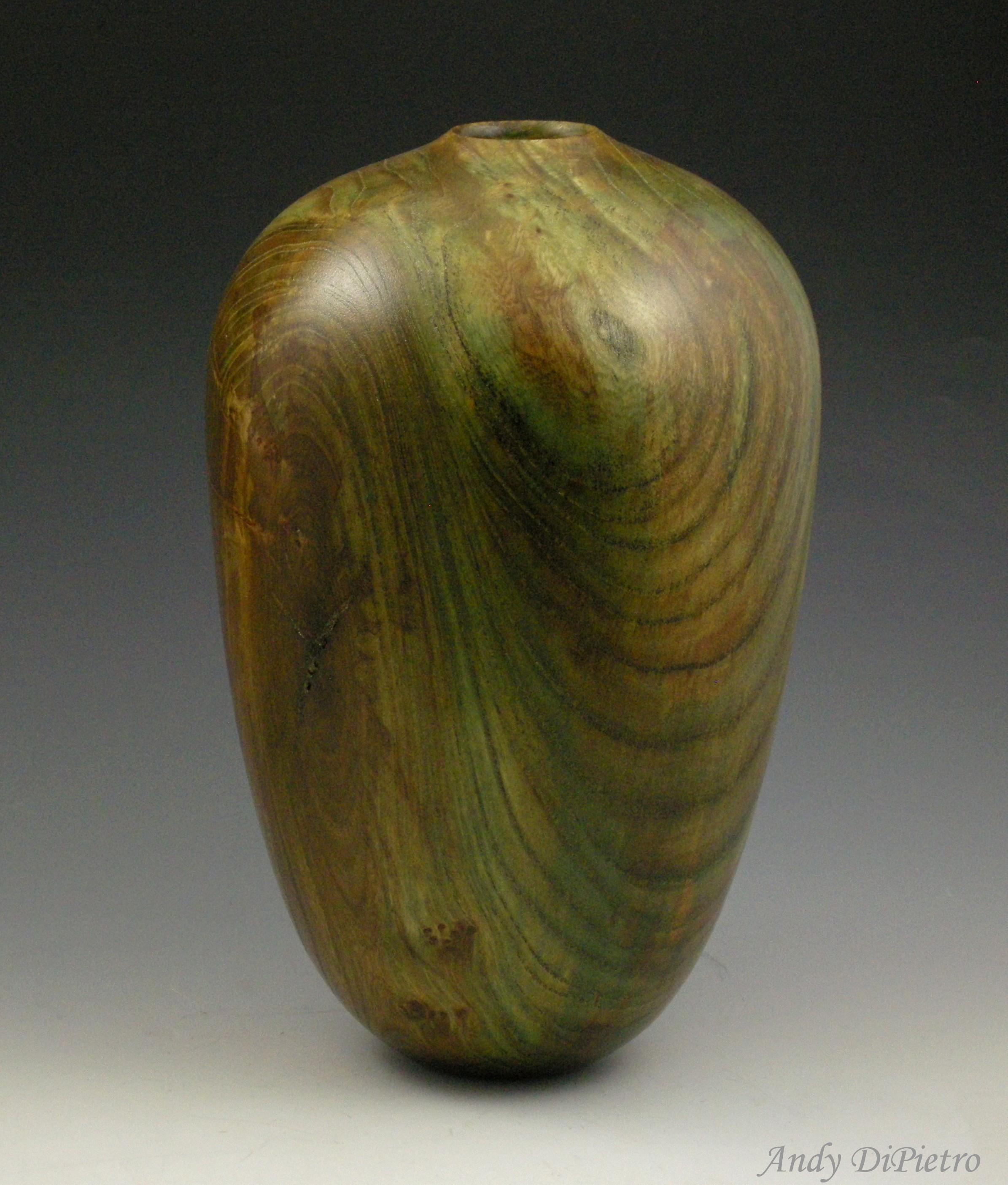 Bronzed Elm #2