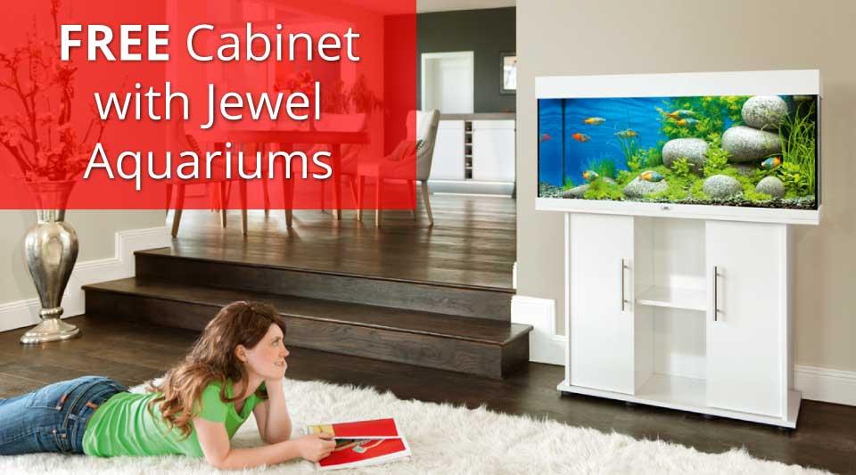 FREE Jewel cabinet offer