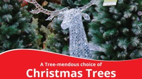 Tree-mendous selection of Christmas tress!