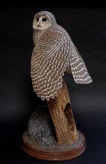 Tom Ahern Bird Sculpture Bethlehem PA