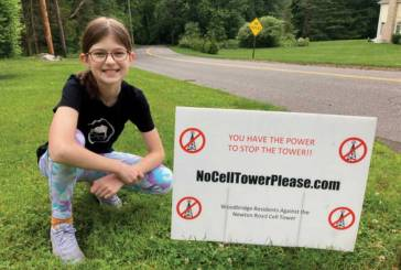 Proposed Cell Tower at 118 Newton Road: Awareness & Community Call to Action