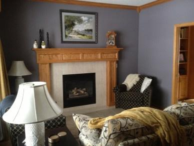 Mahtomedi Living room