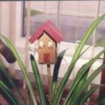 Plant poke sticks