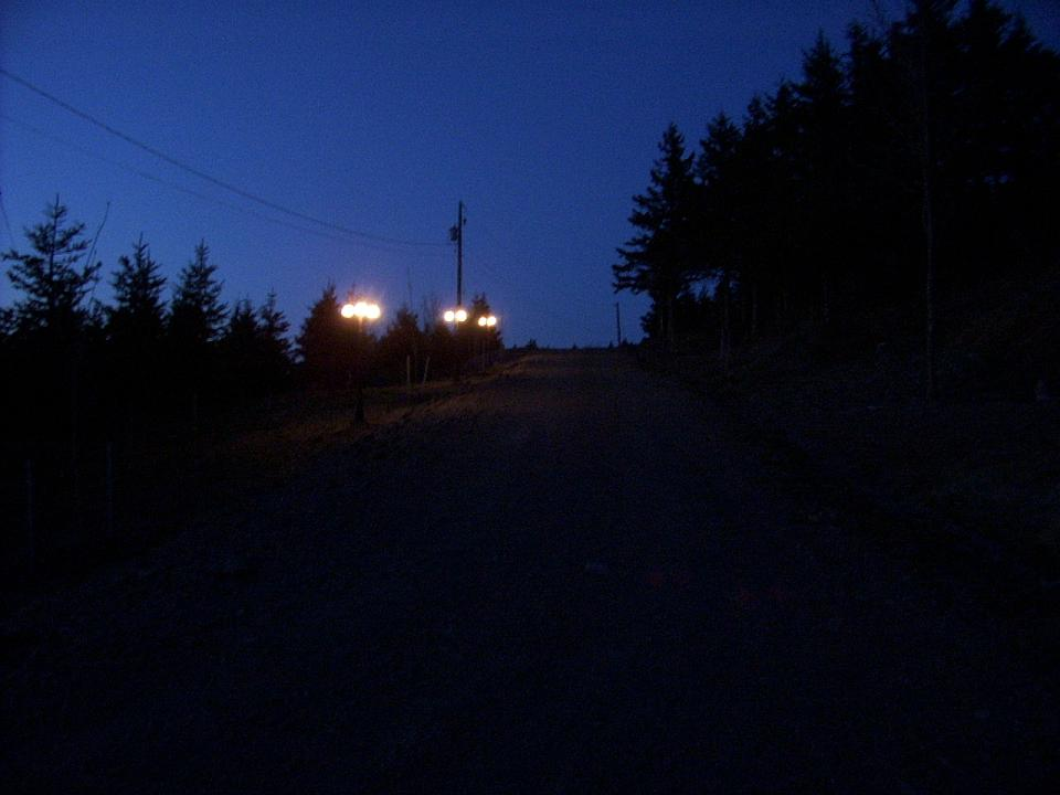 Driveway lighting.