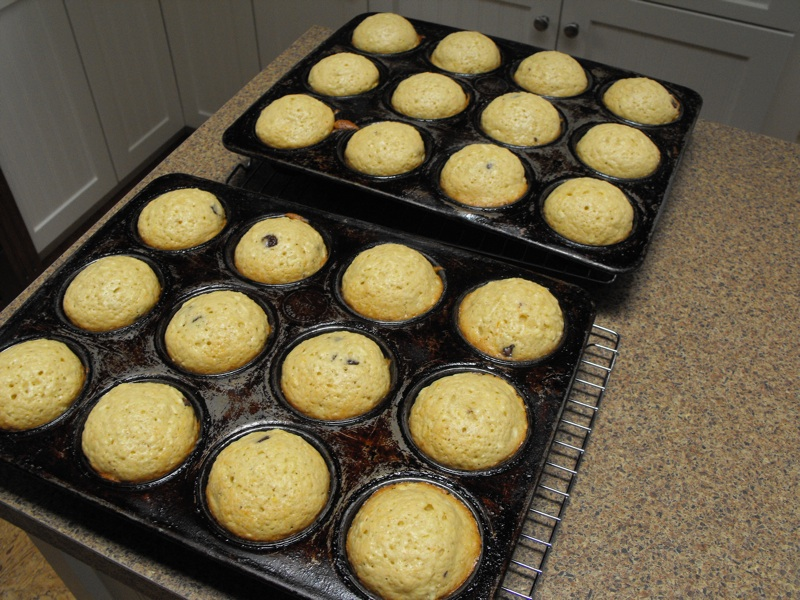 Orange Apple Chocolate Chip Muffins