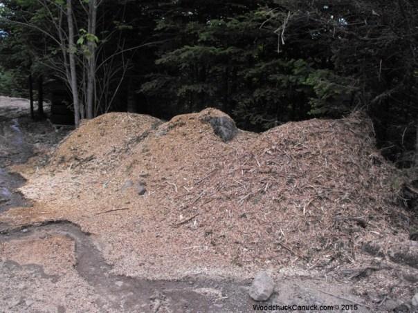 wood mulching,balsam fir,landscaping,forestry