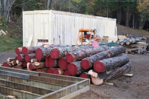 logs painted to help with drying
