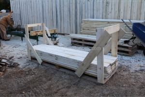 Poplar lumber on pallets