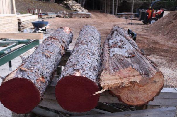 pine trees, saw milling, Nova Scotia,woodworking