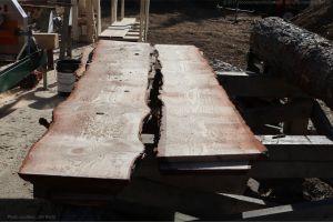 pine log slabs with live edge