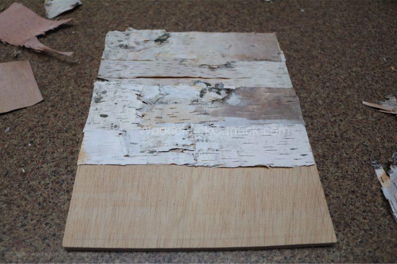 clock,birch bark