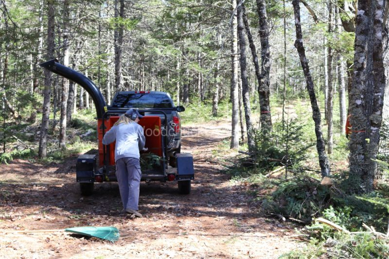 chipping trees,forestry,arborist,landscaping