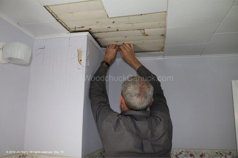 ceiling repairs