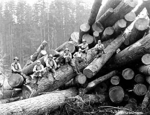loggers,woodsmen,logging,forestry,vintage photos,old photos,photographs