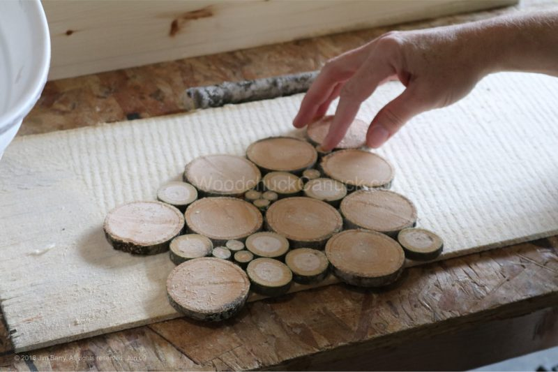 coasters,wood slices,wood cookie