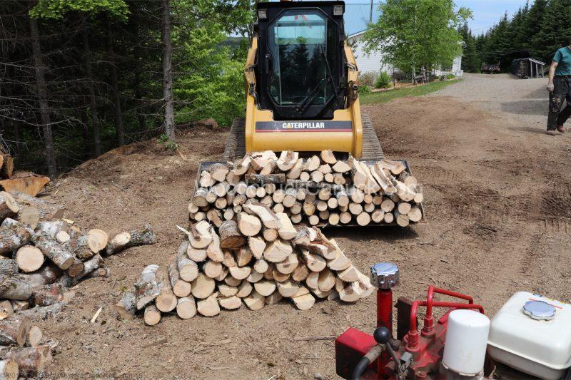 firewood,maple,ash