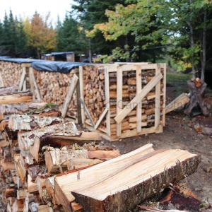 firewood sales,Antigonish County,Guysborough County,Nova Scotia