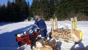 20181231-firewood-1-gina