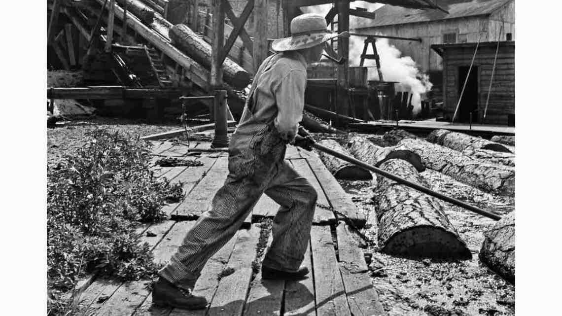 Log driver in Oregon.