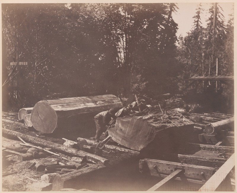 1886 Loading rail cars, Gualala River, Mendocino County, CA.