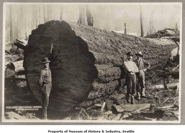 1895 Huron Lumber Company, Bothell, Washington.