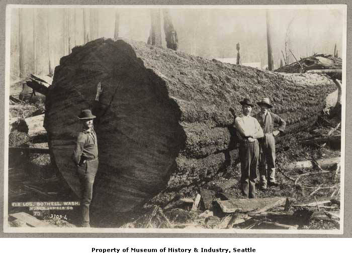 1895 Huron Lumber Company, Bothell, Washington.