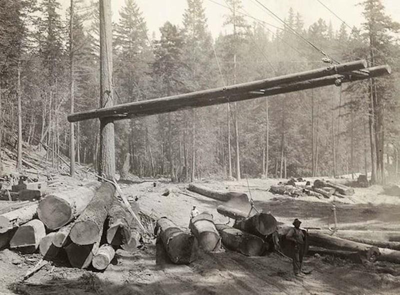 Heel boom log yard.