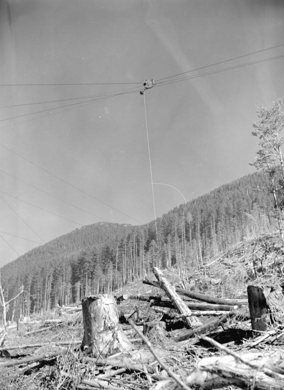 1944 Skidding logs at Youbou, BC