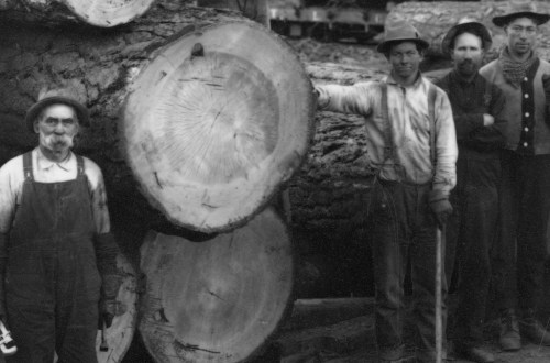 1900 Logging railroad.