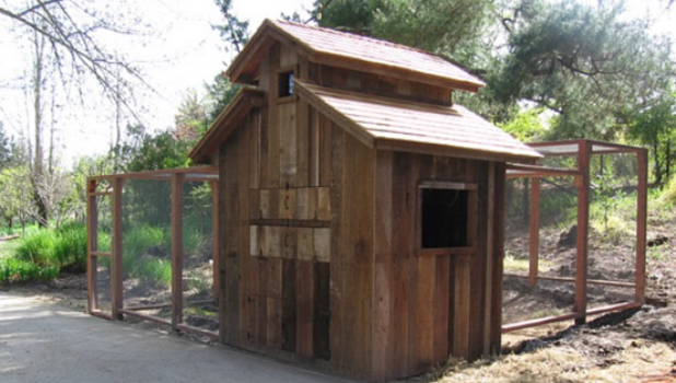 Recycled Wood Chicken Coop