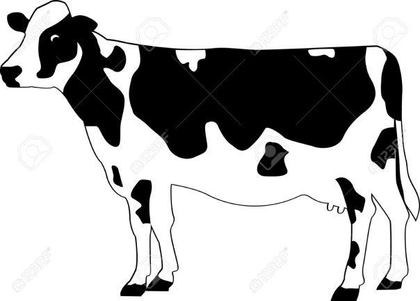 DT-141 Holstein Cow Pattern