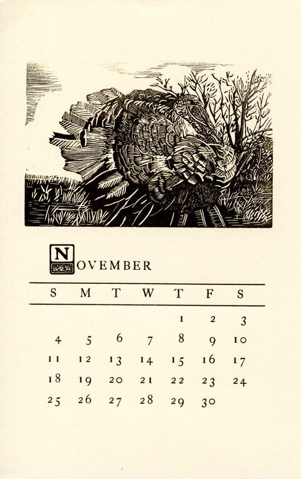 Tom for November Calendar - Many Thanks Given