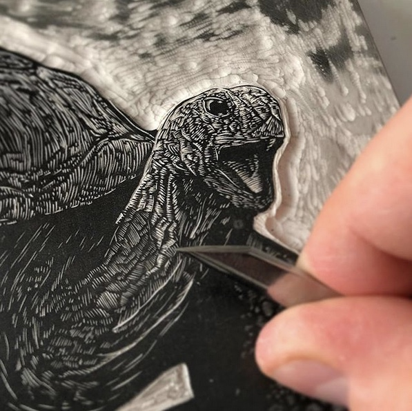 Tortoises in Contemporary Wood Engraving