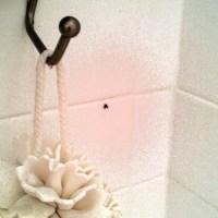 Drain Flies | Woodfin and Mah