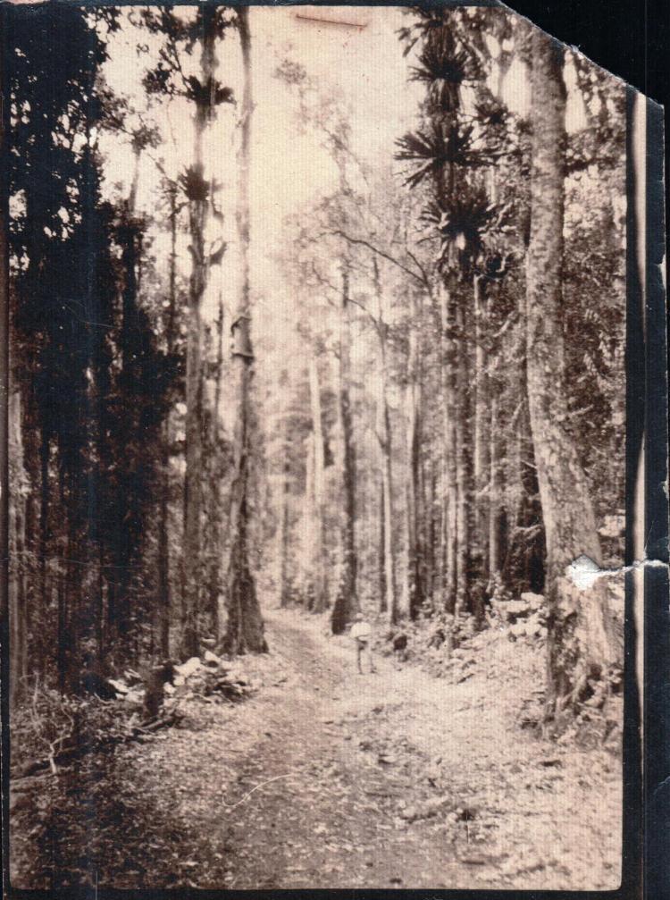 keir-road