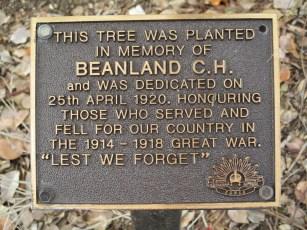 Beanland 1