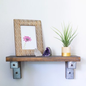gold round air plant holder