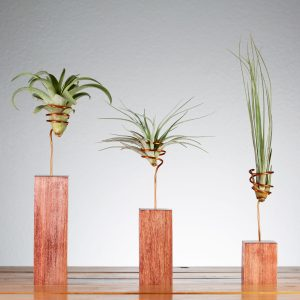 Set of 3 Cherry Wire Air Plant Holders