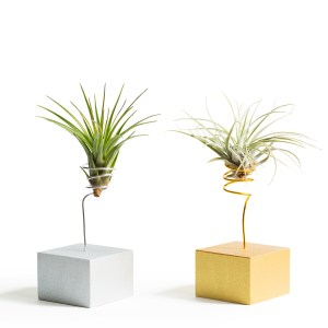 Silver and Gold Wire Vases