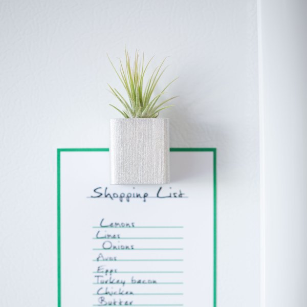 Silver Air Plant Magnet