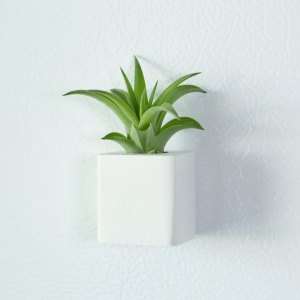 White Air Plant Magnet