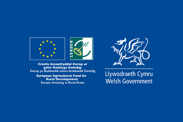 welshgovernment