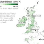 Tree planting 'has mind-blowing potential' to tackle climate crisis