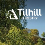 Reducing supply chain cost in the timber trade