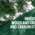 Investing in Woodland Creation and Carbon Storage