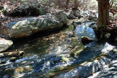 37little_creek_pool