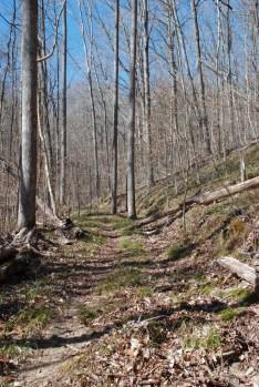 40grasslands_footbed