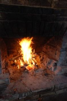 11fire_picnic_shelter