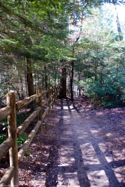 11downstream_trail_at_top