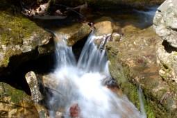 44twin_creeks